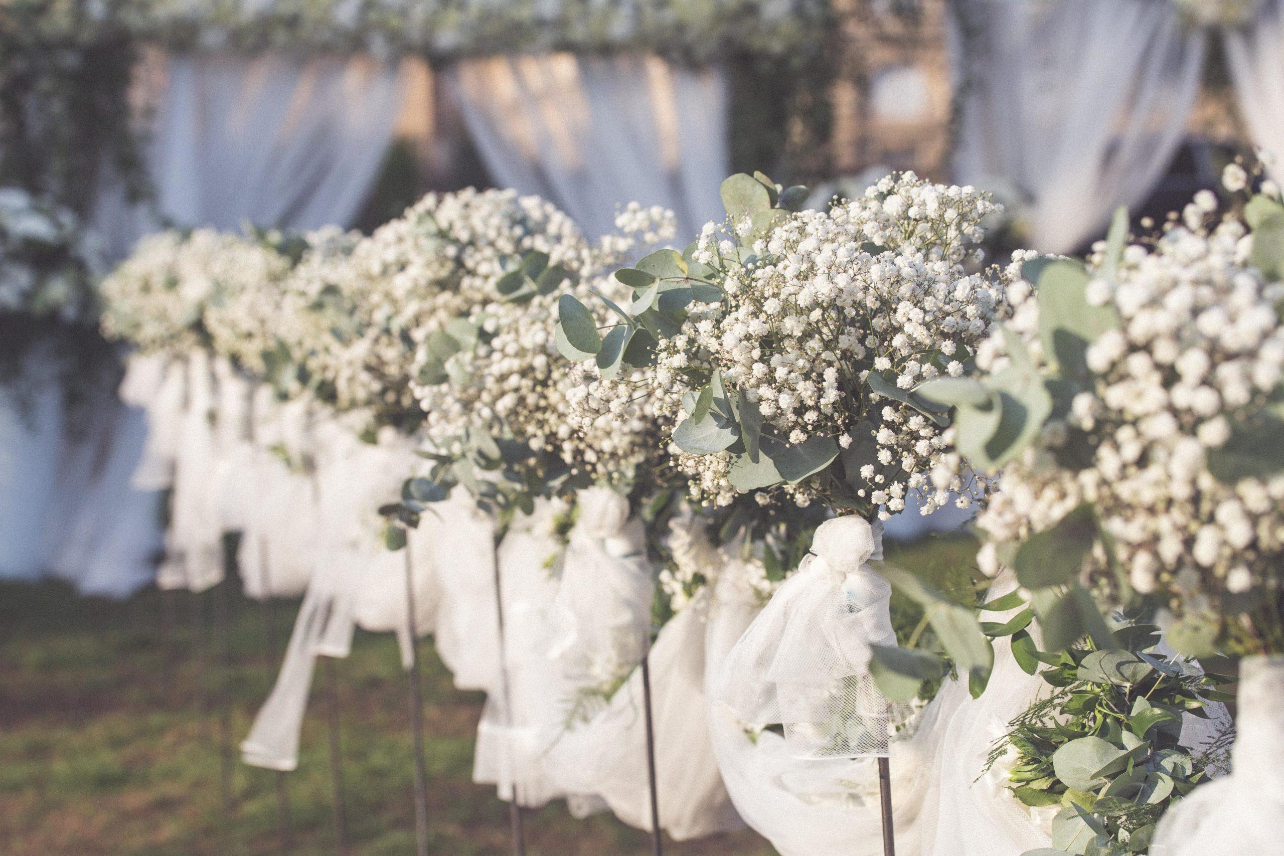 Vos décors de mariage en Serre Sauvage
