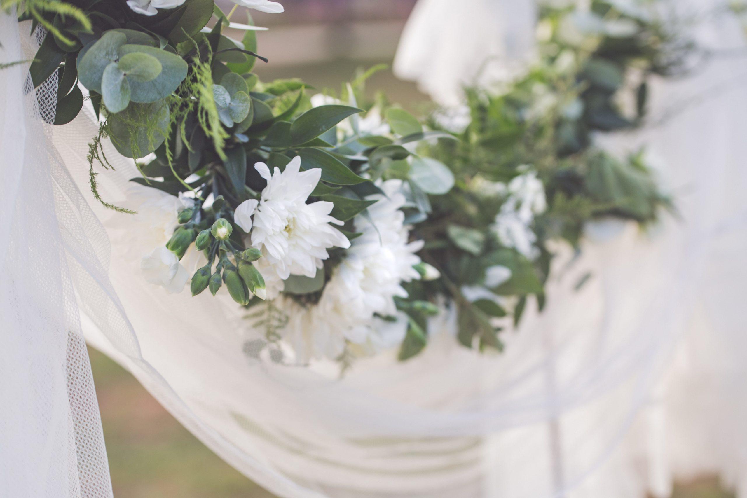 La pureté du décor vert et blanc