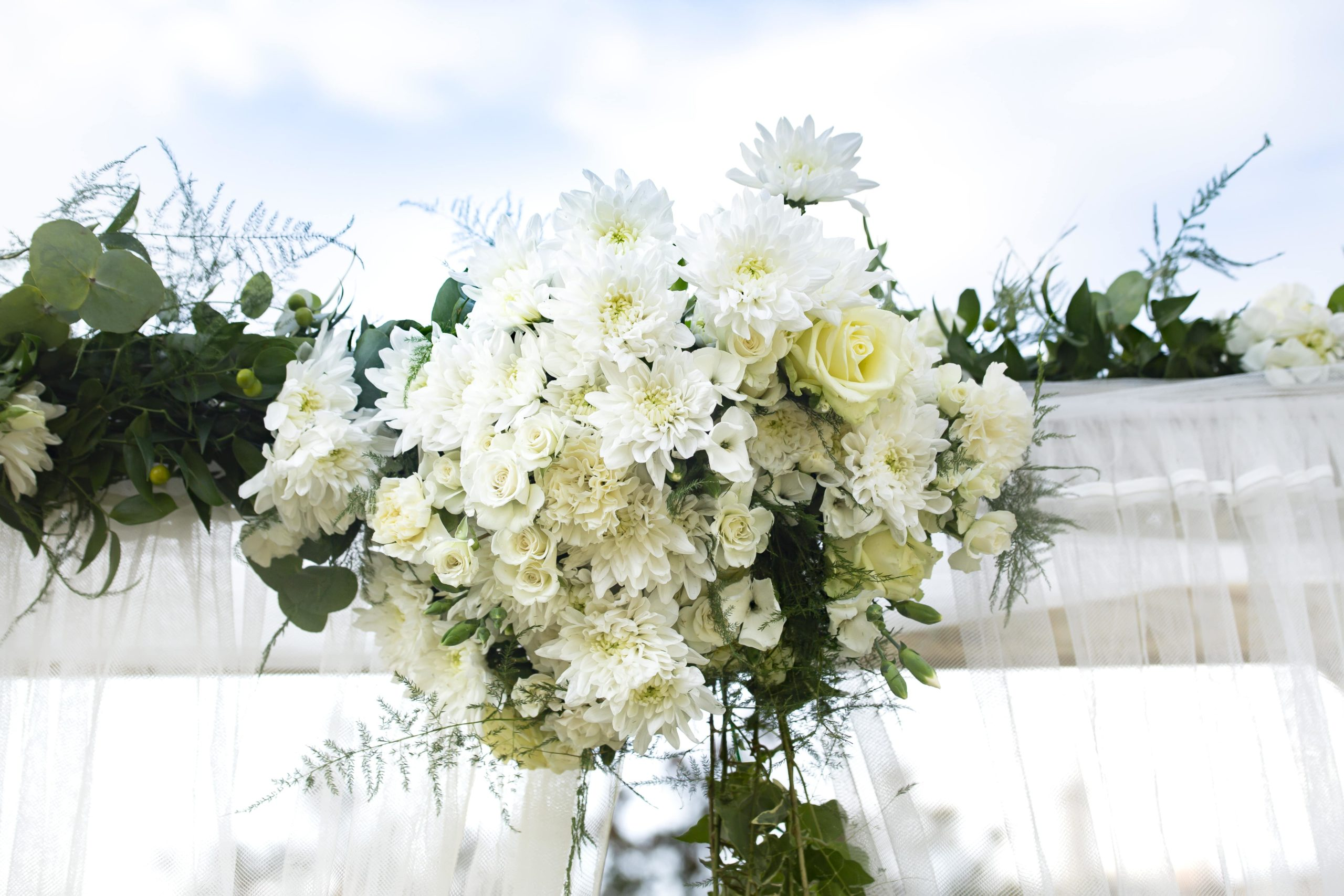L'arche fleurie de blanc dans toute sa splendeur